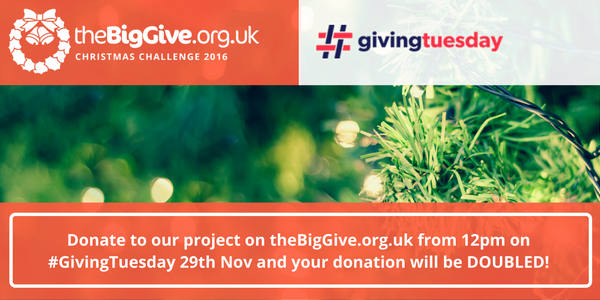 #GivingTuesday – Double your donations during the Christmas Challenge